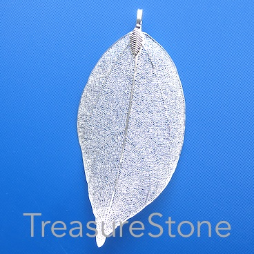 Pendant, silver-colored brass leaf, about 80mm long. Each.