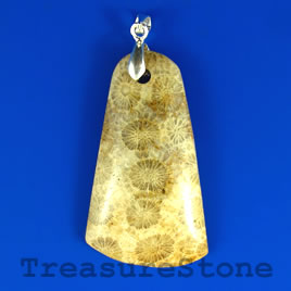 Pendant, Coral Fossil, 28x48mm. Sold individually.