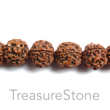 Bead, Rudraksha seed, about 18mm round. pack of 10pcs.