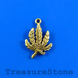 Charm/pendant, gold-plated, 20x25 leaf. Pkg of 7.