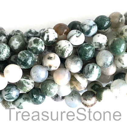 Bead, tree agate, B grade, 8mm round. 15.5-inch, 49pcs