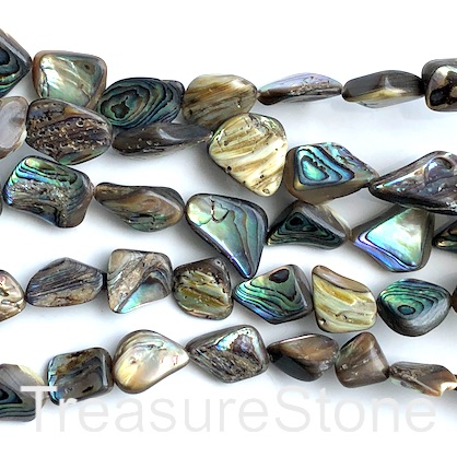 Bead, abalone, 10x14 nugget. 15-inch strand, 25pcs