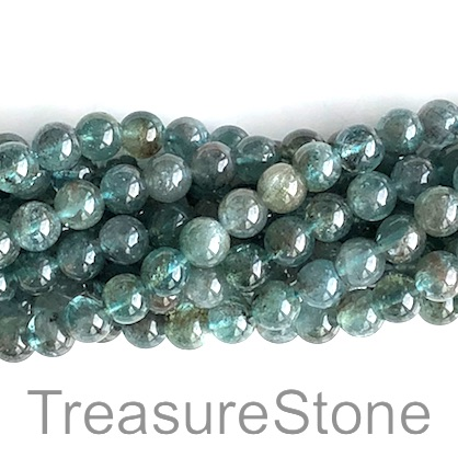 Bead, apatite, transparent, 6mm round, B grade. 15.5 inch, 64pcs