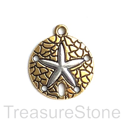 Charm, pendant, connector, gold-finished, 20mm starfish. 4.