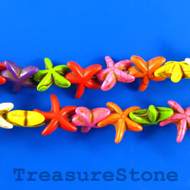 Bead,dyed turquoise, mixed color,15mm starfish. 15.5-inch strand