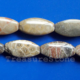 Bead, coral fossil, 11x21mm flat oval. 16-inch strand.
