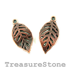 Charm, copper-colored, 12x20mm leaf. Pkg of 12.
