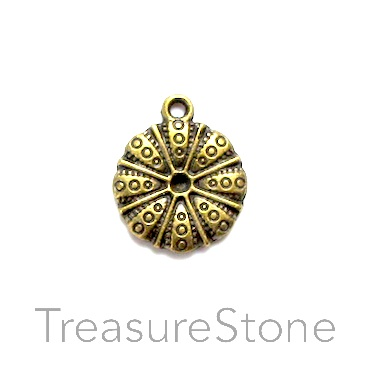 Charm/Pendant, brass-plated, 16mm. Pkg of 10.
