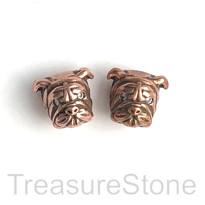 Bead, brass, antiqued copper, 12mm bulldog, dog. Ea