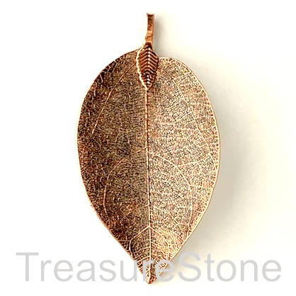Pendant, copper-colored brass leaf, 40-60mm long. Each.