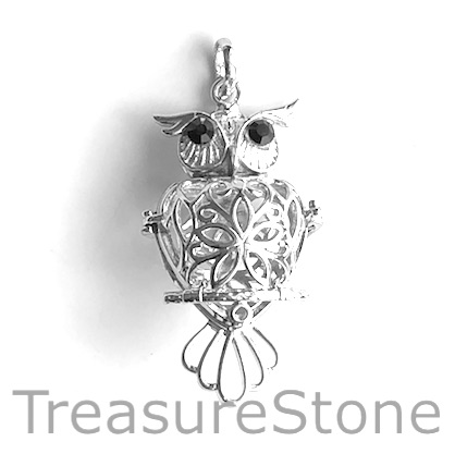 Locket, Cage Pendant, brass, silver, 28x50mm owl. EA.