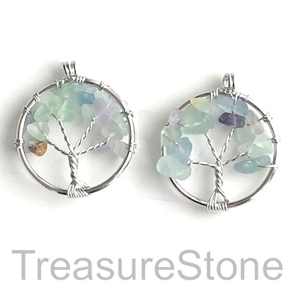 Charm, Pendant, fluorite. 30mm Tree of Life. Pack of 2