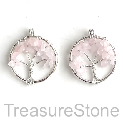 Charm, Pendant, rose quartz. 30mm Tree of Life. Pack of 2