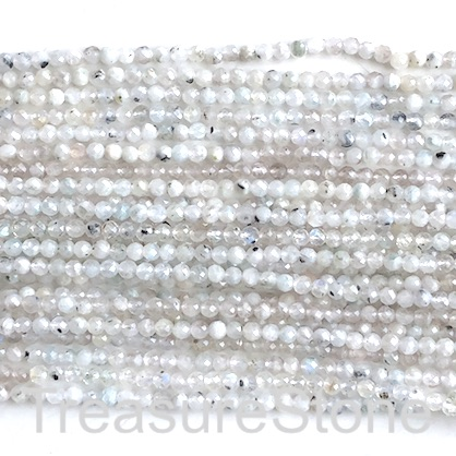 Bead, rainbow moonstone, 3mm faceted round, Grade C. 15""