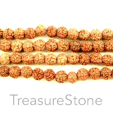 Bead, Rudraksha seed, 8-9mm round. pack of 54pcs.