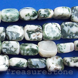 Bead, tree agate, 9x10 mm flat rectangle. 16-inch strand.