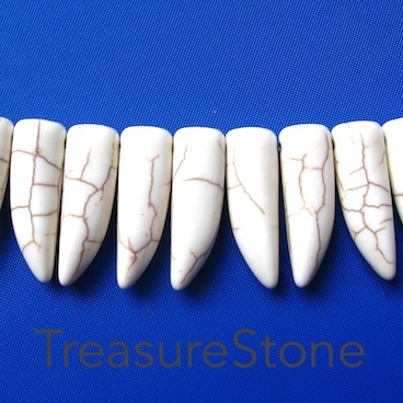 Bead/pendant, white turquoise, 10x29mm teeth. 39pcs.